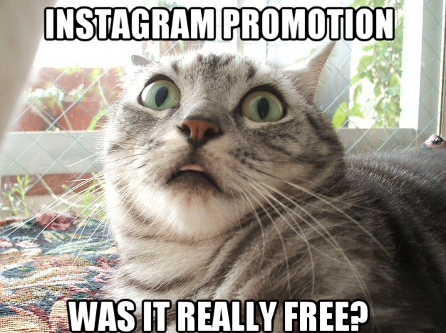 Instagram promotion for free: Was it really free?